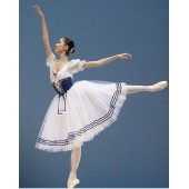 Free Shipping Custom Made Ballet Tutu Costume One Piece,Adult or Children Dance Tutus Ballet Skirts Swan Lake Costume